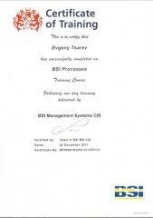Сертификат 5 Царев